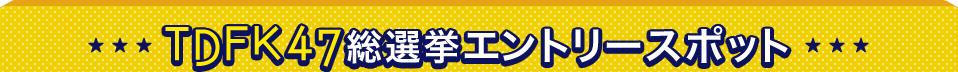TDFK47総選挙エントリースポット