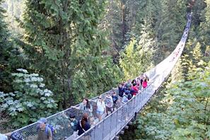 世界の徒歩吊り橋 10