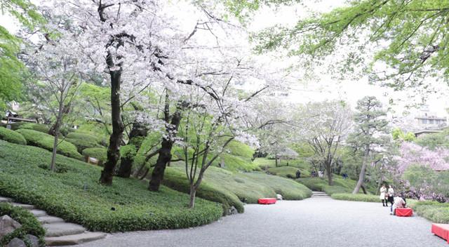 画像:八芳園