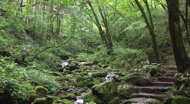 画像:御岳山